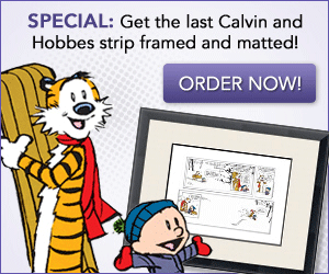 Calvin and Hobbes - Last Comic Framed Print!